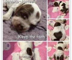 Keep the faith - una